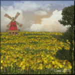 Windmühle im Sonnenblumenfeld